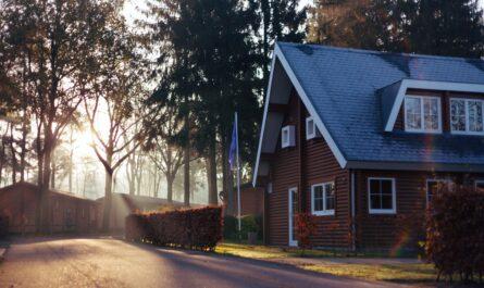 Dřevostavba postavená na pěkném místě na kraji lesa.