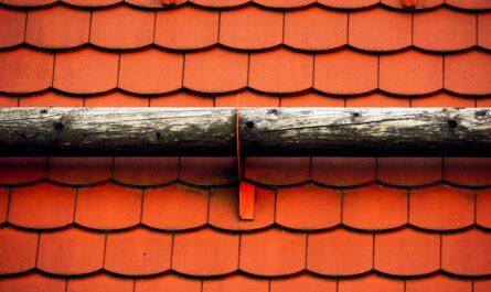 Červená střešní krytina vyjímající se na střeše.