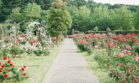 Zahradní architektura v upravené zahradě.